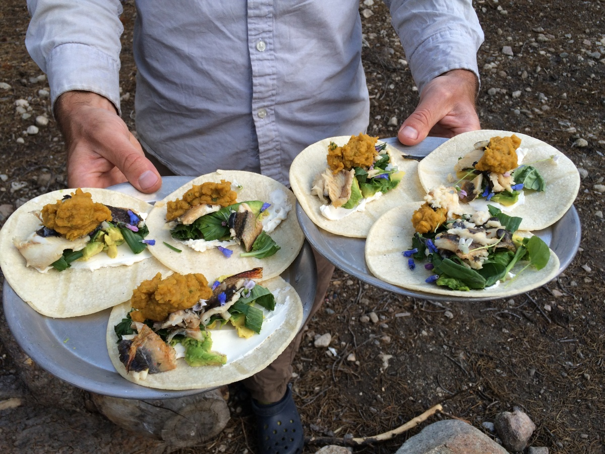 Wild Recipes from Public Lands: Brook Trout and Wildflower Tacos