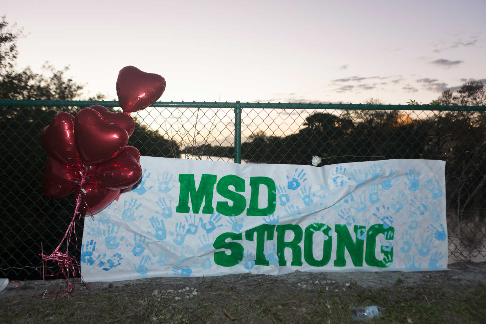 Parkland Hero Says School, Sheriff's Office Are to Blame for Shooting