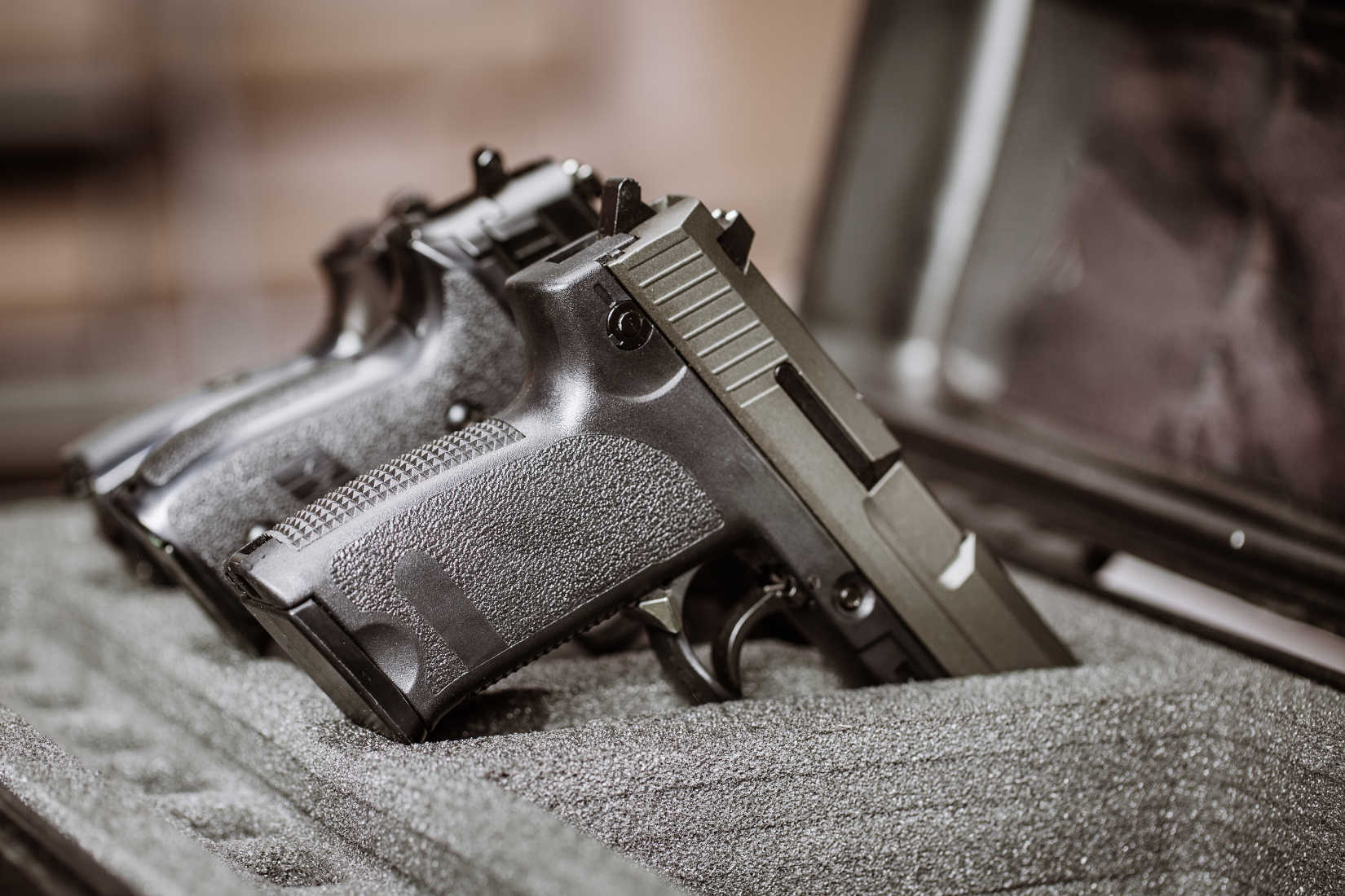 Democrats in Michigan Introduce Gun Control Measures That Trample the Constitution