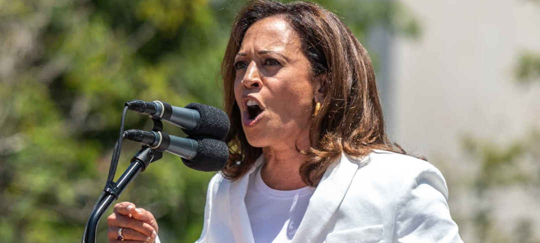 Leftist Hypocrisy Strikes Again: Gun Control Advocate Kamala Harris Owns a Gun 'for Personal Safety'