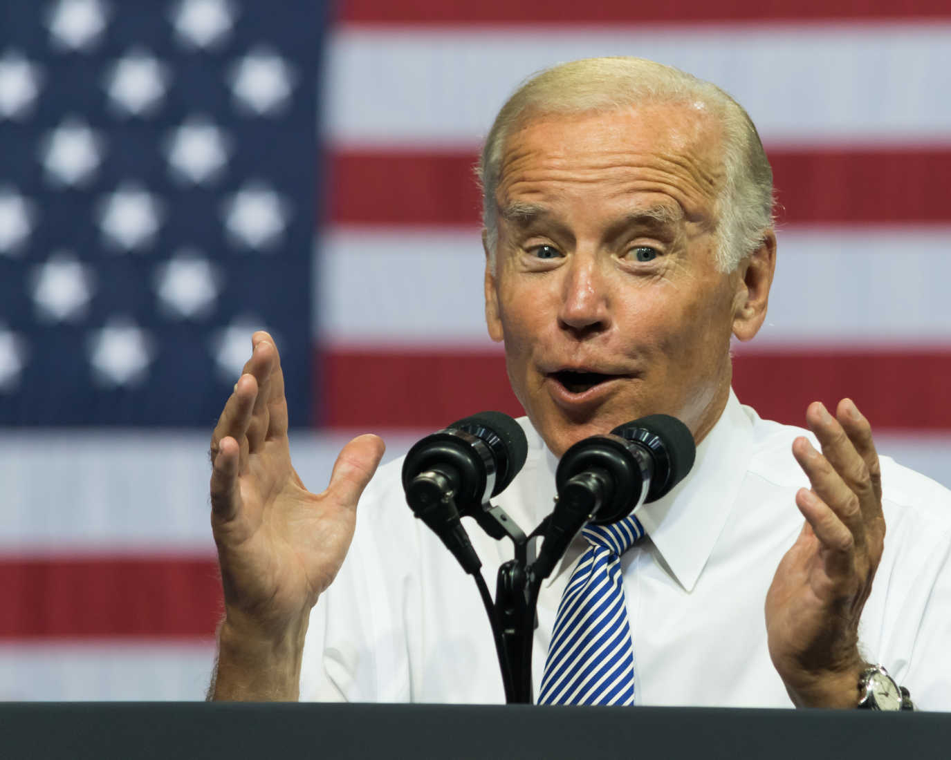 Joe Biden Says Not Everyone Is 'Entitled' to Own a Gun