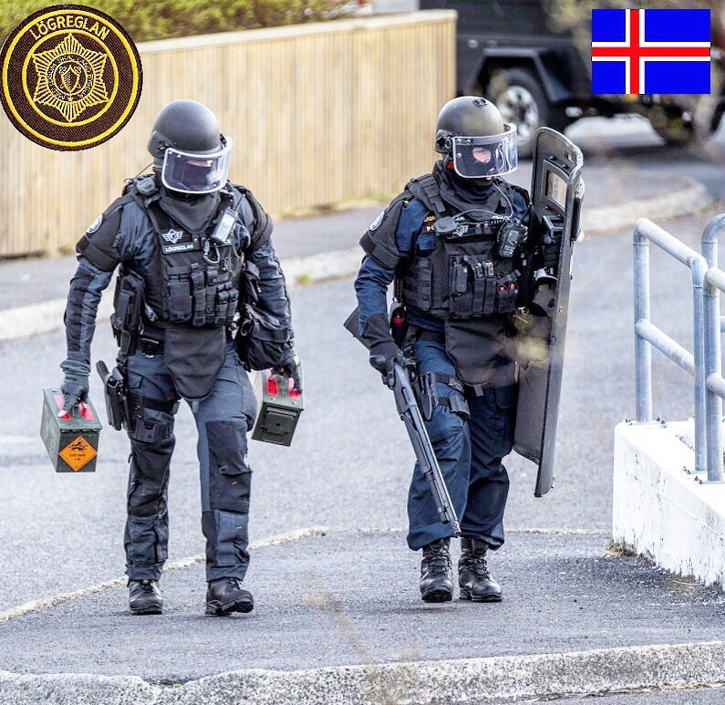 Fire and Ice: Iceland's Elite 'Viking Squad' SWAT Team