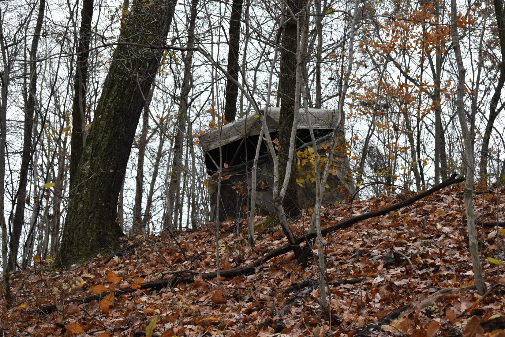 Hunting Blinds: Ideal for the Female Hunter