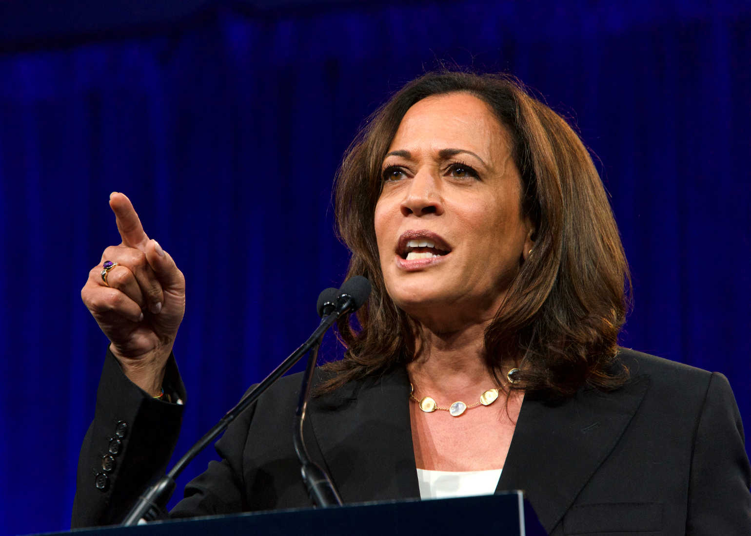 Reminder: Kamala Harris Said She Would 'Take Executive Action' on Gun Control, Ban AR-15s