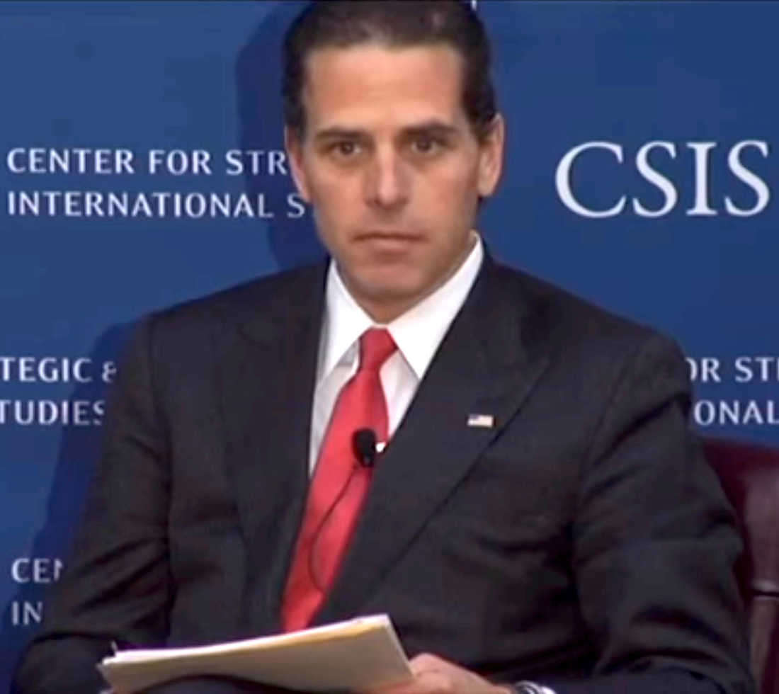 Did Hunter Biden Lie on His Background Check Form?