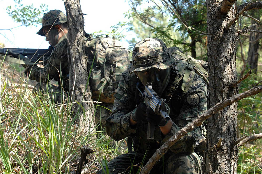 White Tigers and Black Panthers: South Korean Special Forces